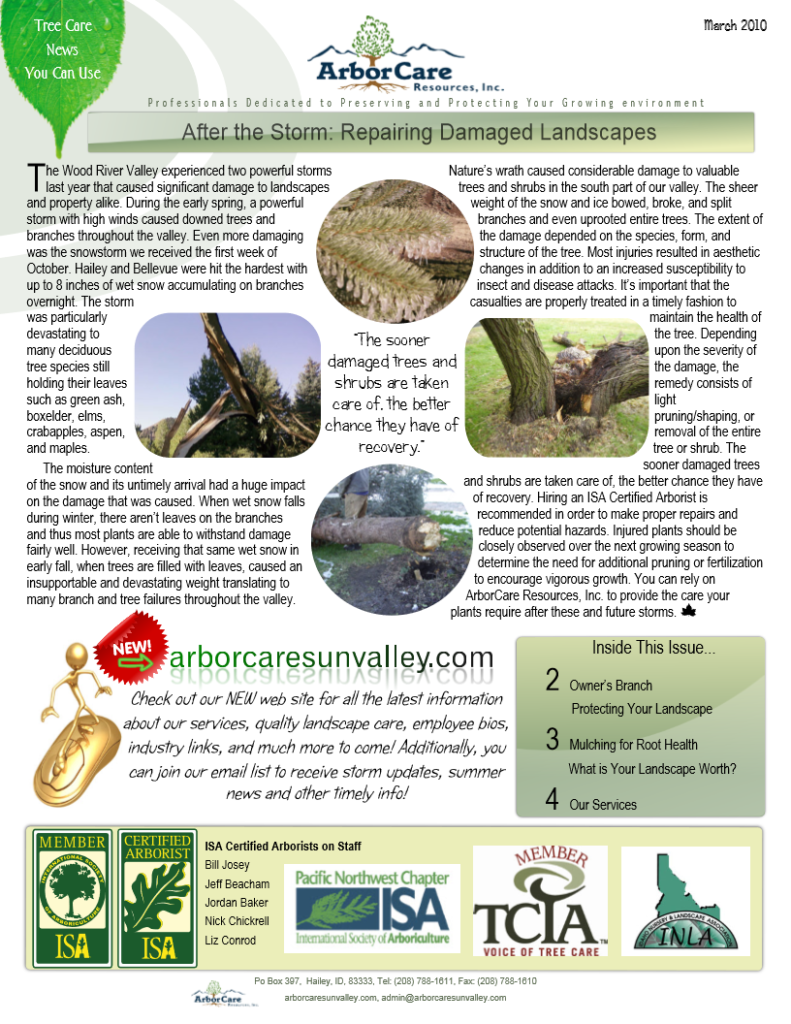 screenshot of 2010 annual arborcare resources newsletter