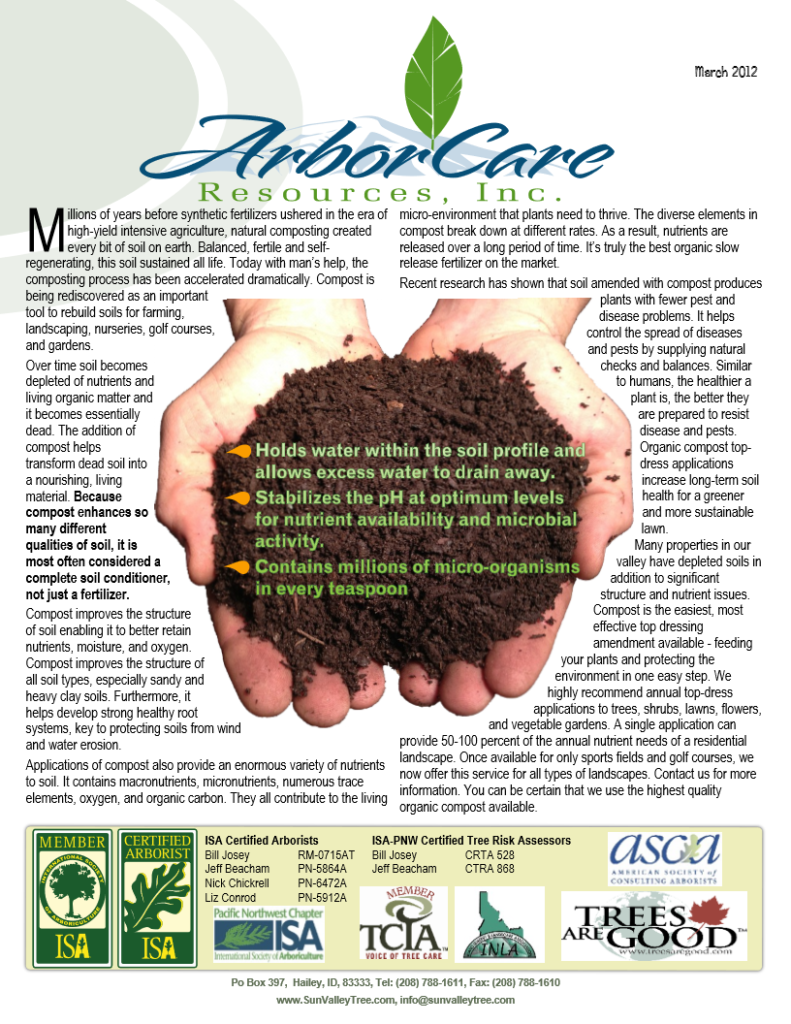 screenshot of 2012 annual arborcare resources newsletter