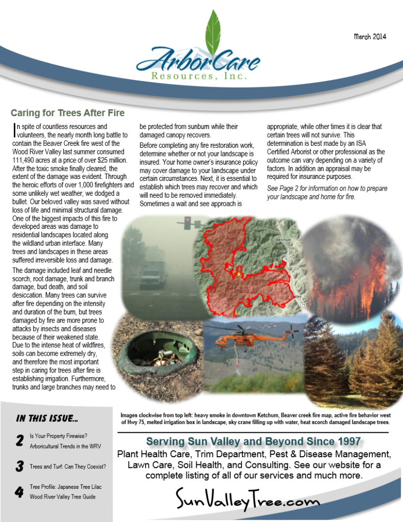 screenshot of 2014 annual arborcare resources newsletter