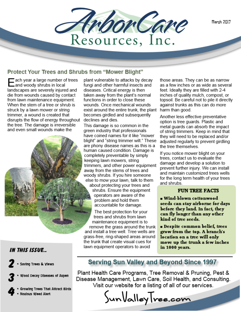 screenshot of 2017 annual arborcare resources newsletter