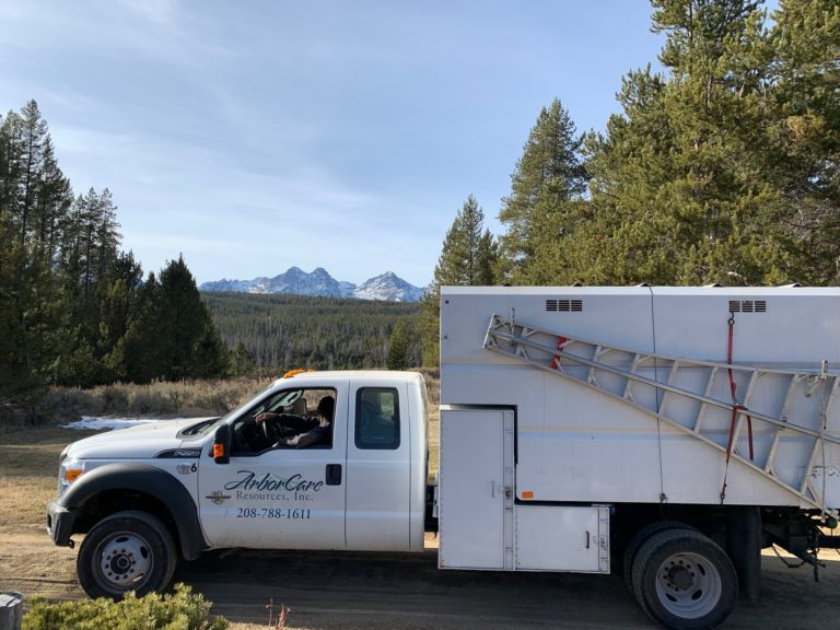 ford f550 chip truck and the sawtooth mountain range stanley idaho