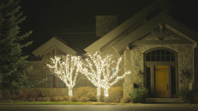 holiday lights in 3 crabapple trees at the front of house at night
