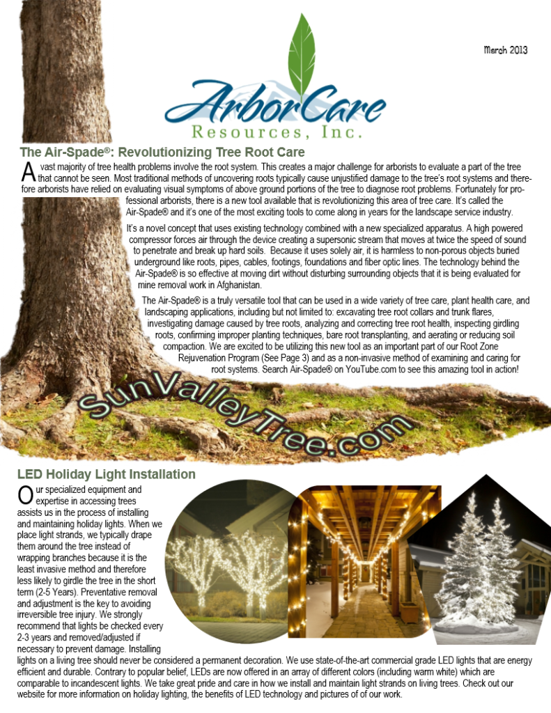screenshot of 2013 annual arborcare resources newsletter