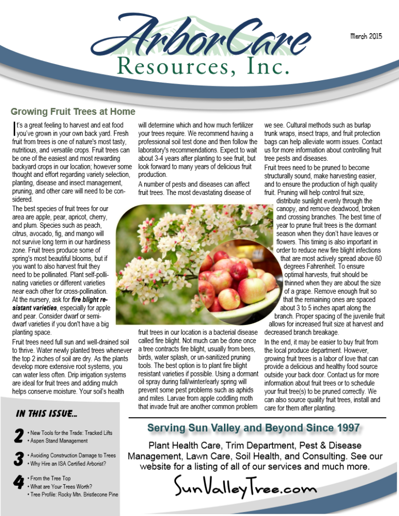 screenshot of 2015 annual arborcare resources newsletter