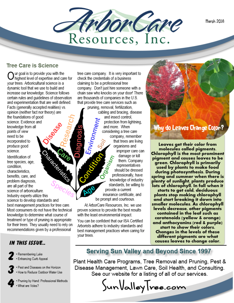 screenshot of 2016 annual arborcare resources newsletter